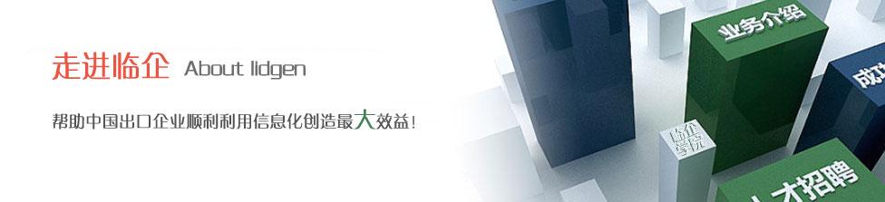 关于我们,关于杭州临企网络技术有限公司